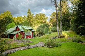 Arboretum 6